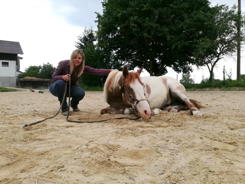 rotter_horsemanship